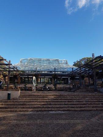 Kirstenbosch National Botanical Garden: Conservatory at Gate 1