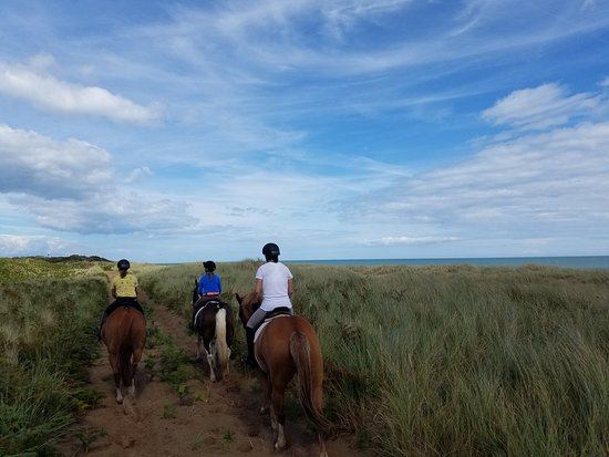Glenealy, Irlandia: Riding in the dunes