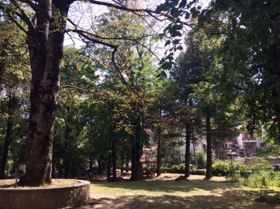 Metsovo, اليونان: Άποψη του κήπου