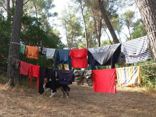 camping du garlaban aubagne france voir les tarifs et avis camping tripadvisor. Black Bedroom Furniture Sets. Home Design Ideas