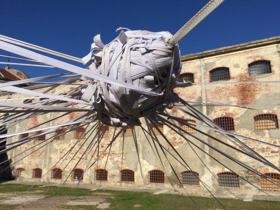 Espacio De Arte Contemporaneo: photo2.jpg