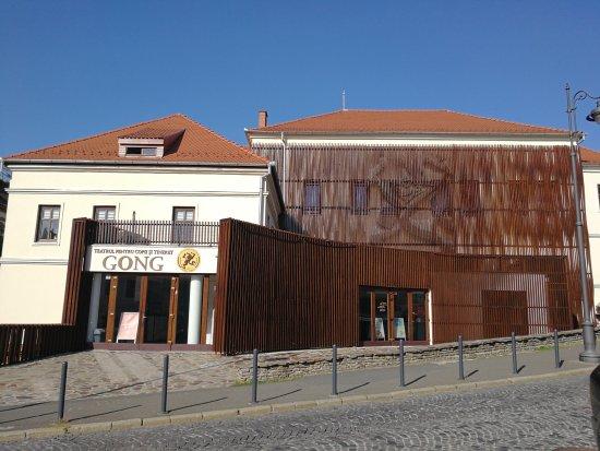 teatrul gong