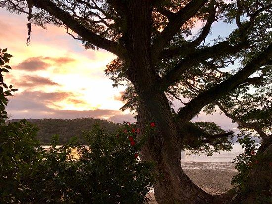 Maravu Plantation Resort Taveuni Island