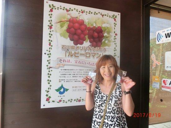Kahoku, Japón: 大きなポスターと