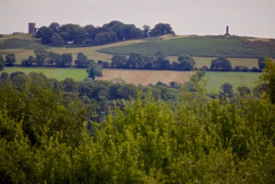 Leicestershire, UK: View of Bradgate Park