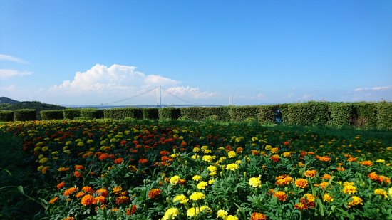 Awaji Highway Oasis: DSC_2271_large.jpg