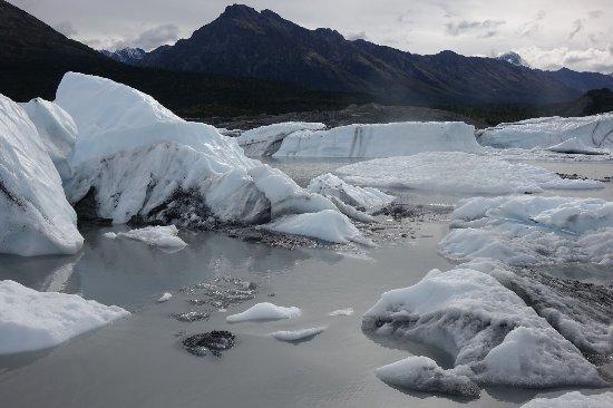 Glacier View, AK: Resized_DSC06270001_3797_large.jpg