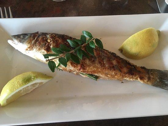 Restaurant Stella Mare : photo1.jpg