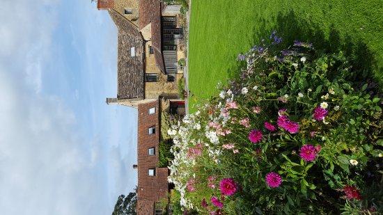 Bruton, UK: Cole Manor Tea Rooms