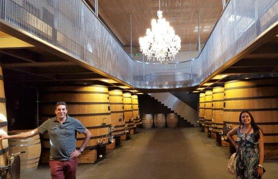 Bordeaux Wine Trotter