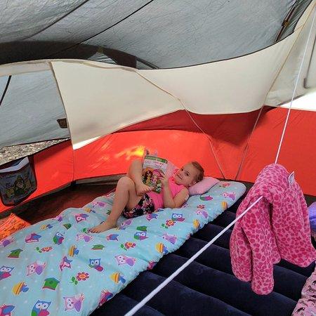 Marienville, بنسيلفانيا: Kids love this campground.