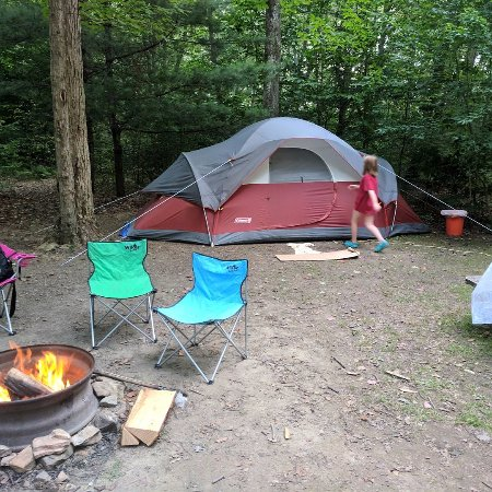 Forest Ridge Campground & Cabins: Site 64 was awesome!