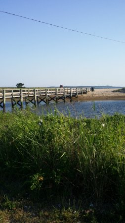 East Sandwich, MA: great path and beach area at nearby Sandy Neck Beach to walk your dog and enjoy nature, sand dun