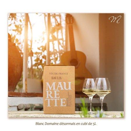 La Motte, França: Domaine de la Maurette