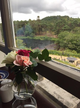 Ballynahinch Castle Hotel: Lovely view of the stream behind the hotel