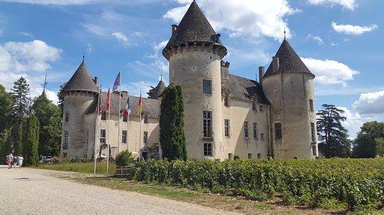 mirage picture of chateau de savigny les beaune savigny les beaune tripadvisor. Black Bedroom Furniture Sets. Home Design Ideas