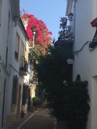 Hostal El Gallo: photo2.jpg