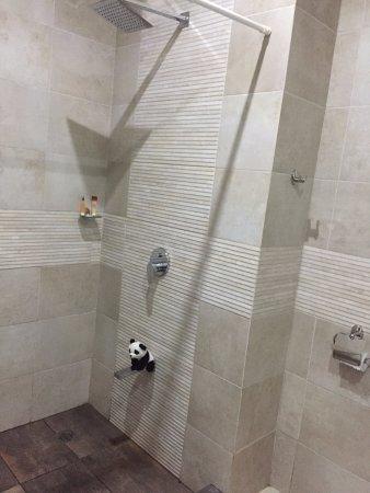 Hotel Magic Mountain: shower