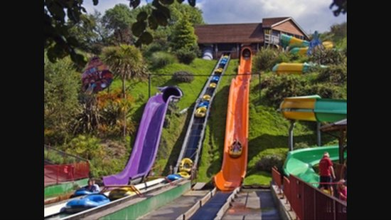 Blackawton, UK: Woodlands Family Theme Park is a great day out just 1 mile up the road