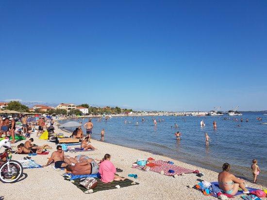 Vir, Κροατία: 20170825_164805_large.jpg