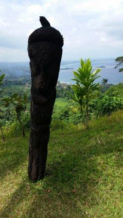 Vanuatu Jungle Zipline: One final view.