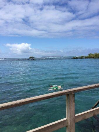 Puerto Villamil, Ecuador: una pileta natural para hacer snorkel