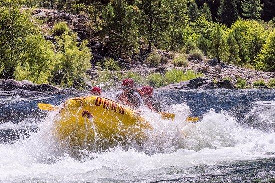Lotus, Californië: Middle Fork American River rafting