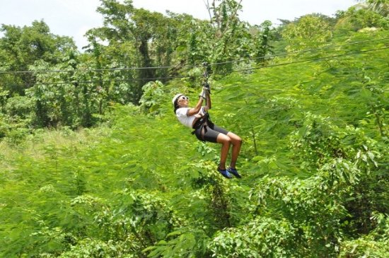 Clarendon Parish, Jamaïque : Zip line