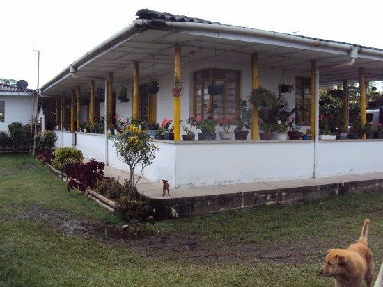 Santa Rosa de Cabal, Colombia: Finca cafetera