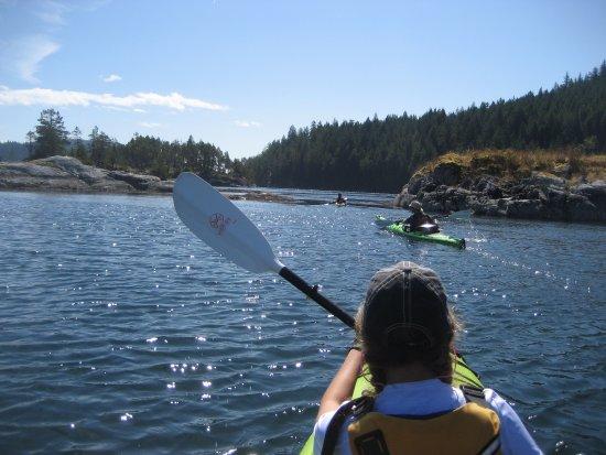 Heriot Bay, Canada: Surge Narrows