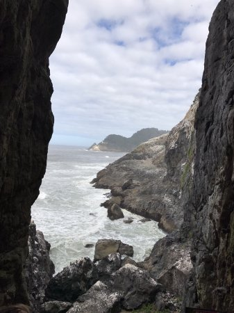 Sea Lion Caves: photo1.jpg