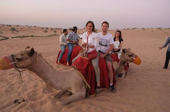 Jaisalmer Sunset Camel Ride con cena