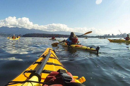 Nature Kayak Tour in Vancouver
