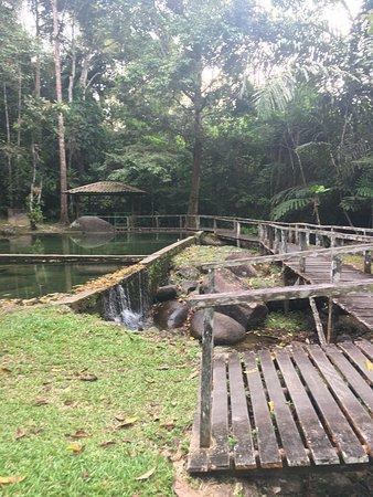 Lundu, Malásia: Slow and steady trekking whilst bird watching.