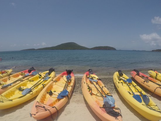 Kayaking Puerto Rico: photo0.jpg