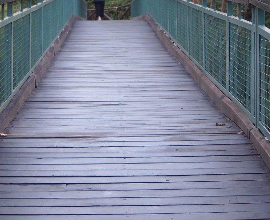 Mara Leisure Camp: The Bridge on the River
