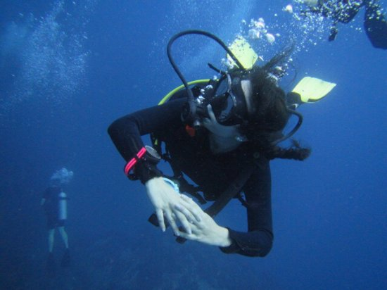 Discovery Dive Centre: photo9.jpg