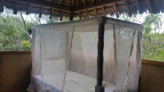 Pangani, تنزانيا: Bett in der Bush Banda