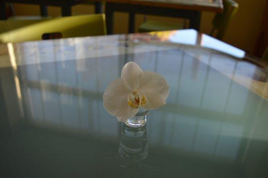 Hotel il Roscio Picture