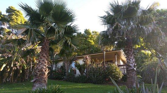 Avalon Resort: photo0.jpg