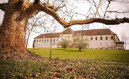 Kohfidisch, Austria: Die  Gartenfront