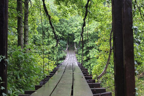 Lazika Travel: Мост счастья