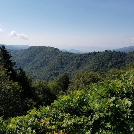 Bryson City, Carolina del Nord: A few of the views from Newfound Gap