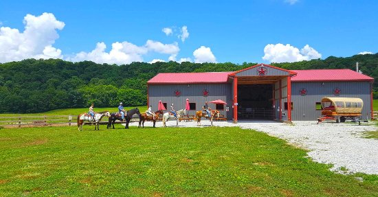 Hurricane Creek Stables, LLC
