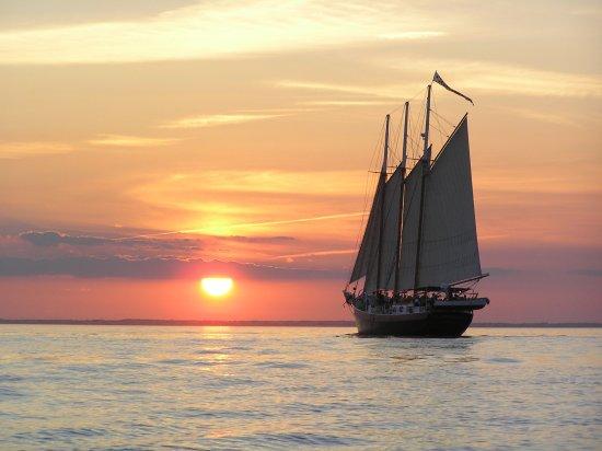 Yorktown Sailing Charters