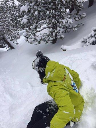 Rialp, Hiszpania: BOSQUE DE PORTAINE CON LOS MONITORES DE LA ESCUELA D' ESQUI I SNOW DE CIMS