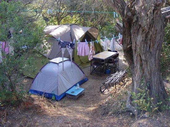 Uno dei migliori campeggi della Corsica! Recensioni su
