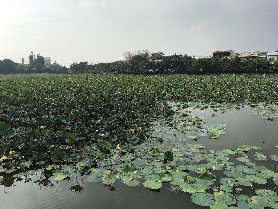 Dong Shi Lin Ye Cultural Park