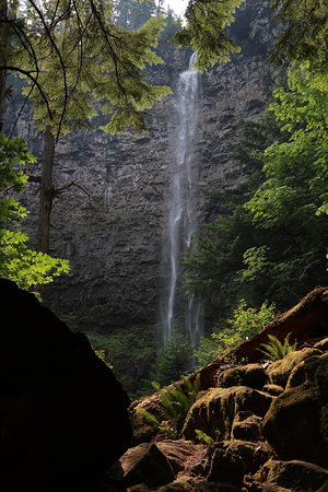 Roseburg, Oregón: watson falls from trail