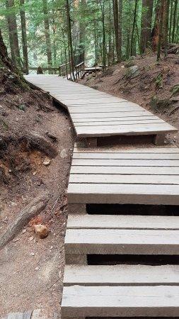 North Vancouver, Canada: Lynn Canyon Park walkways